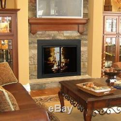 Pleasant Hearth Fireplace Doors Small Tempered Glass Cabinet-Style Mesh Panels